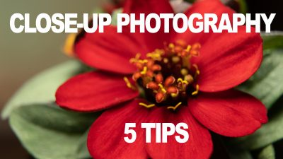 close-up-photography-5-tips-yt-thumb